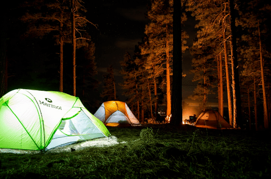tents in the woods during nighttime