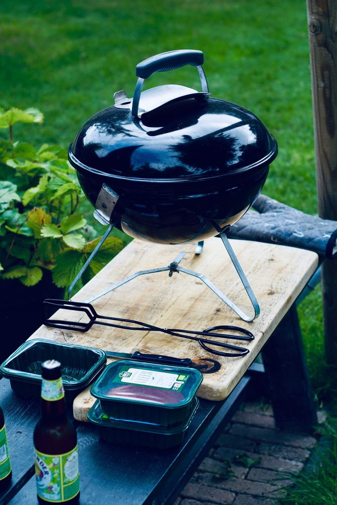 portable grill with lid